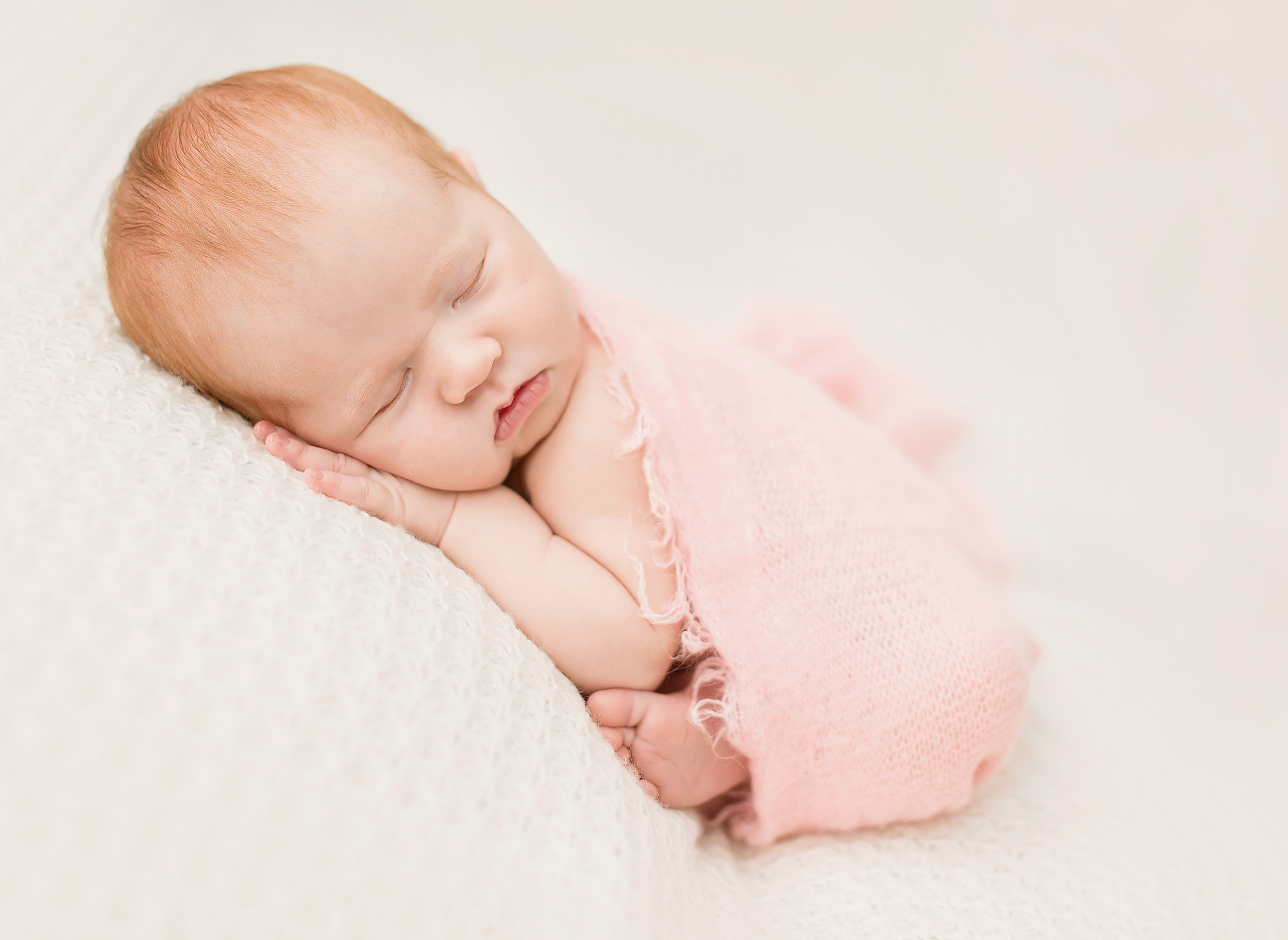 gorgeous newborn photos greensboro nc