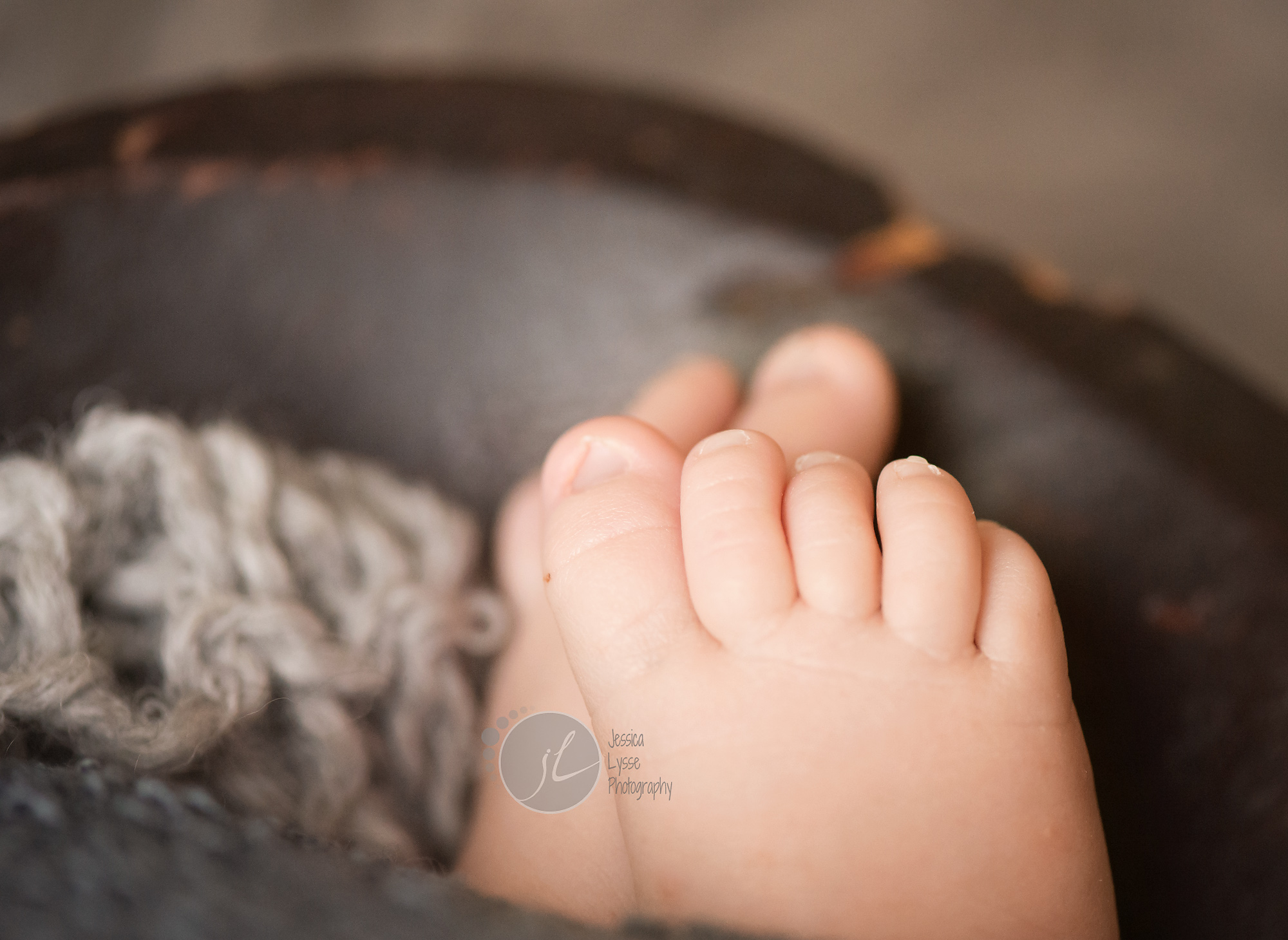 baby toes greensboro nc photographer