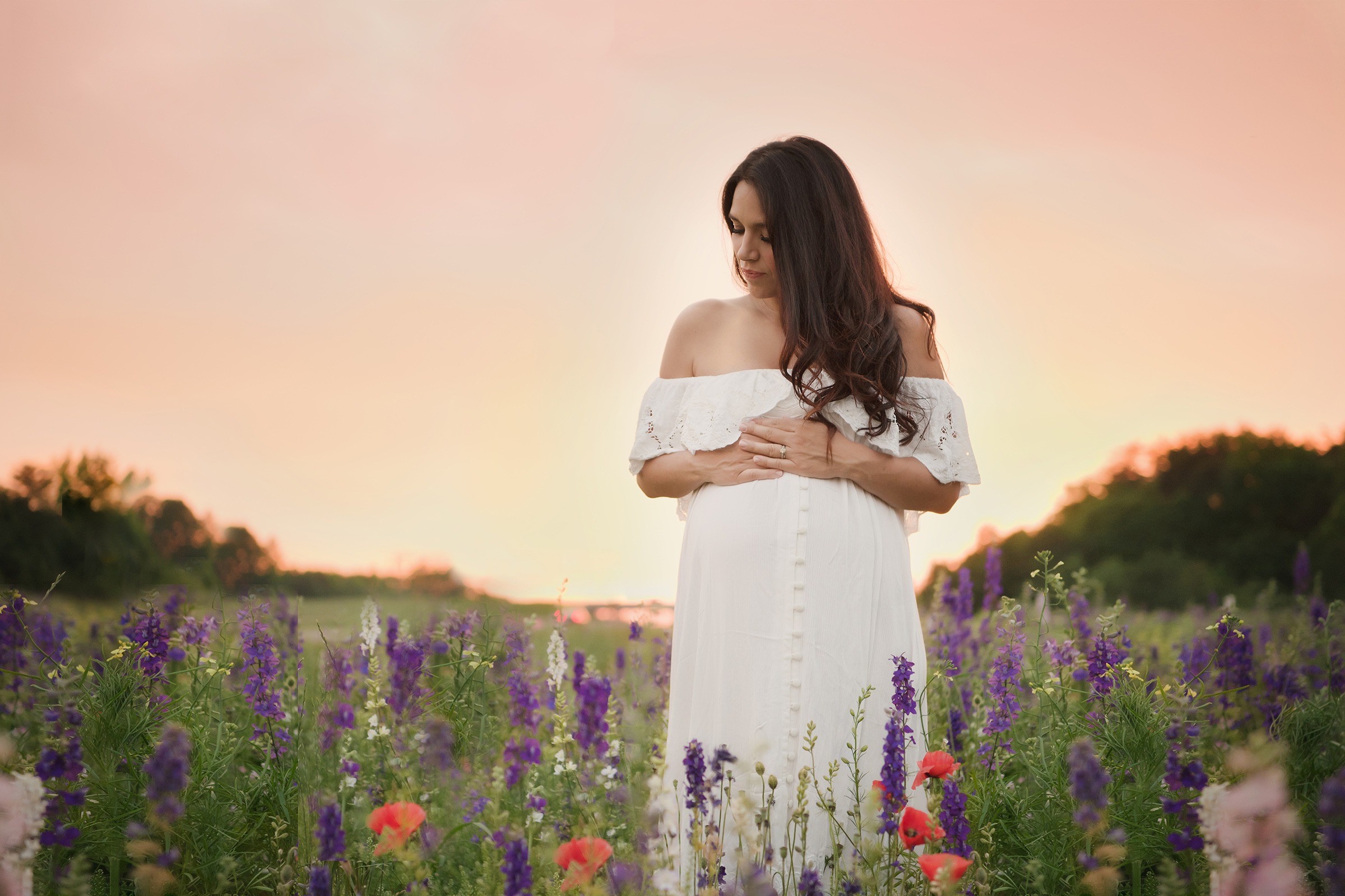 baby bump at sunset in a field of flowers
